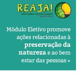 Módulo Eletivo - Grupo Reaja
