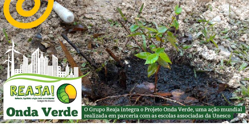 Comunidade riobranquina participa do Projeto Onda Verde
