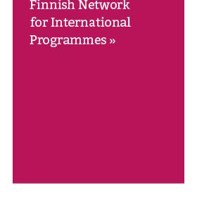 Sistema finlandês de Ensino Superior