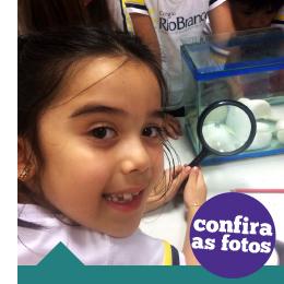 Período Integral: crianças aprendem sobre o desenvolvimento dos girinos