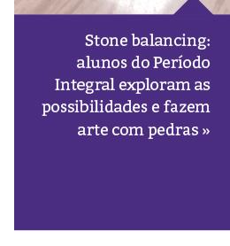 Desafio das Pedras: Equilíbrio, Paciência e Estratégia