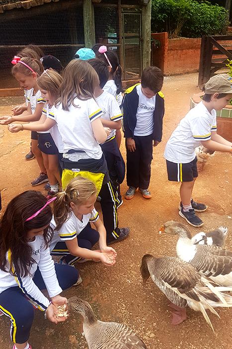 Os alunos ganharam passeio para a Fazendinha – Estação da Natureza