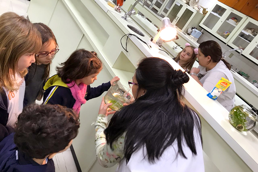 Natureza Sob Investigação: crianças do Jardim II pesquisam as plantas aquáticas