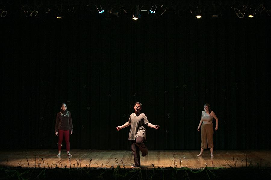 O Rei Leão: alunos e ex-alunos apresentam musical