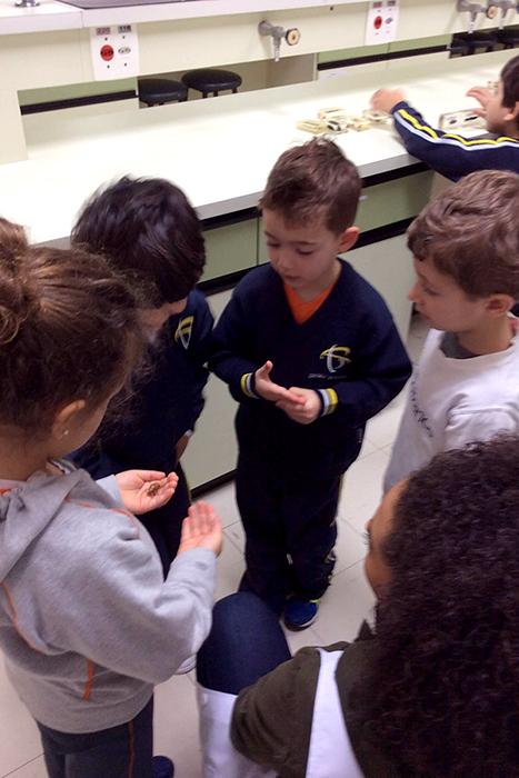 Aprendendo um com o outro: alunos do Jardim I e do 4º ano aprendendo juntos sobre os grilos