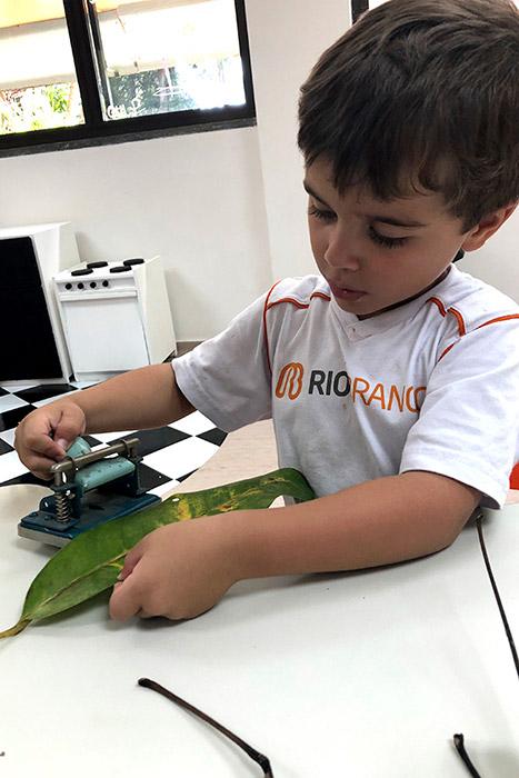 Confete sustentável no Baile de Carnaval do Rio Branco