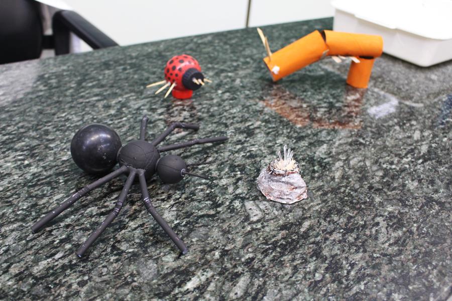 Alunos colocam em prática os conhecimentos de Zoologia e constroem protótipos de Artrópodes