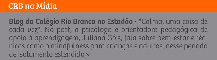 Blog do Colégio Rio Branco no Estadão - 'Calma, uma coisa de cad vez'