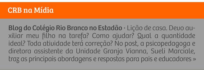 |Blog do Colégio Rio Branco no Estadão| Tarefa de casa: principais dúvidas e abordagens para pais e educadores